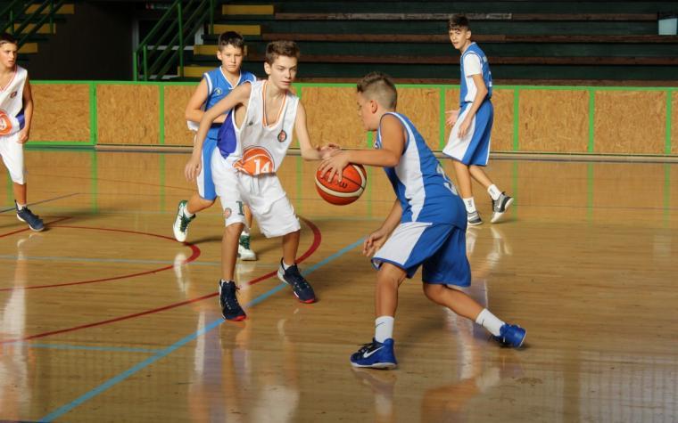 Image result for Škole košarke u Hrvatskoj